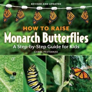 how-to-raise-monarch-butterflies-a-step-by-step-guide-for-kids-stem-books-for-kids
