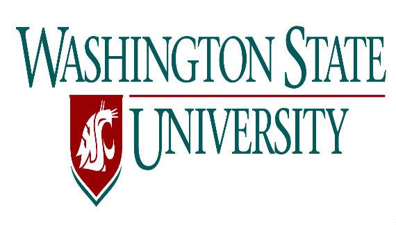 Washington State University Online Bachelor of Science in Data Analytics