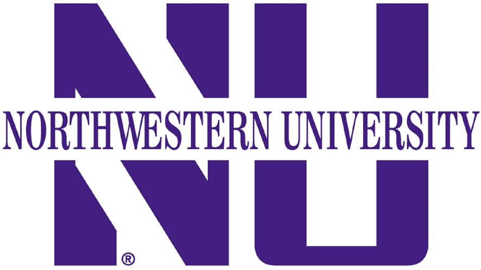 Northwestern University Master's in Information Design & Strategy Online