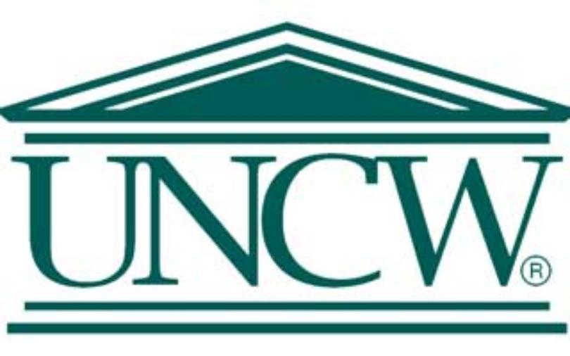 UNCW M.S. in Business Analytics Online
