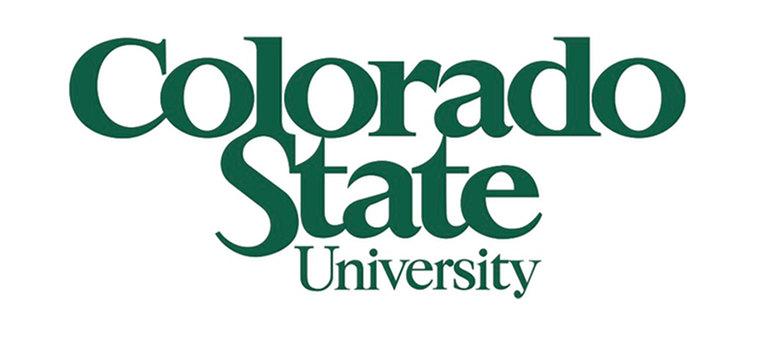 Colorado State Online MBA, Marketing Data Analytics