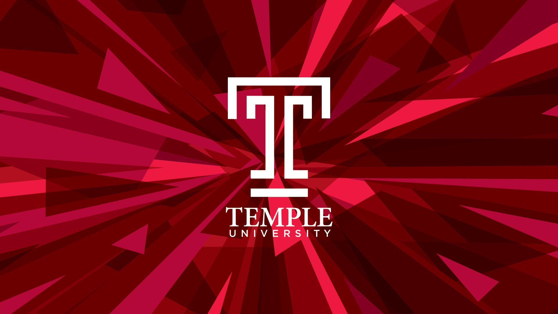 Temple University Online MS in Marketing-Marketing Research and Insight
