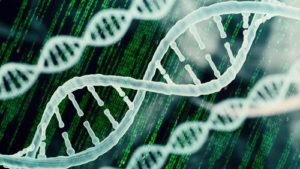 Employment in Bioinformatics by Industry